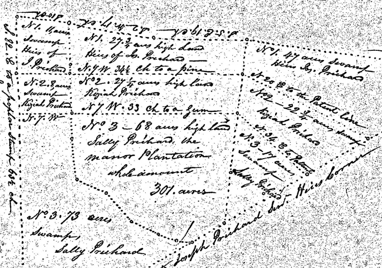 Division of Land Among Pritchard Heirs