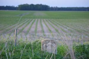 Gardner Trafton Headstone