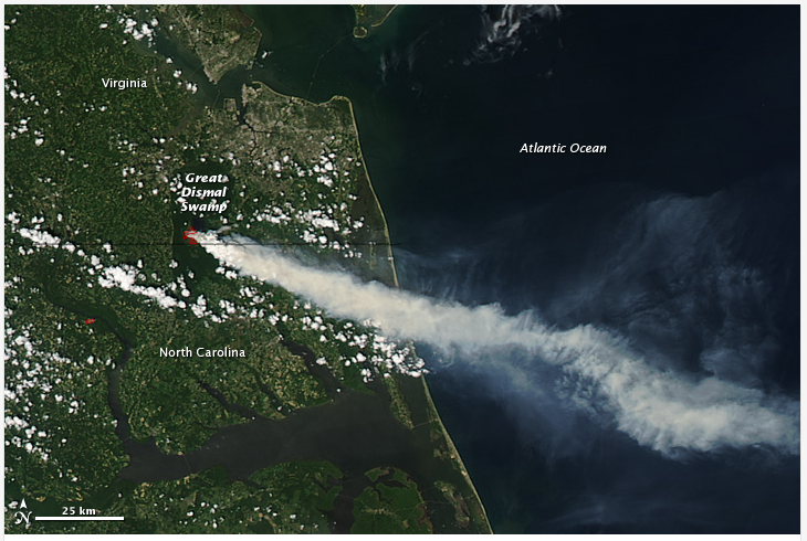 Great Dismal Swamp 2011 Wildfire