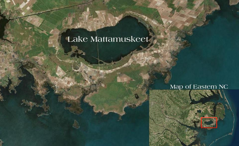 Lake_Mattamuskeet